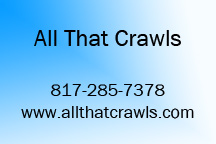 All That Crawls